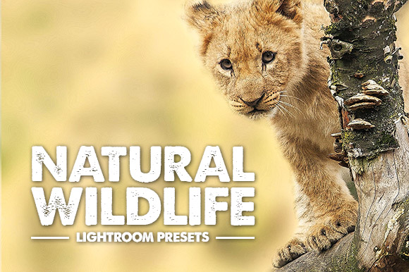 wildlife-lightroom-presets