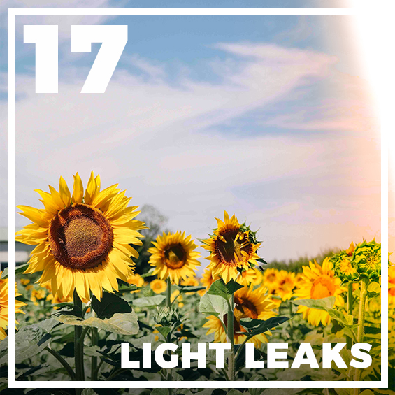 17-light-leak-presets-lightroom