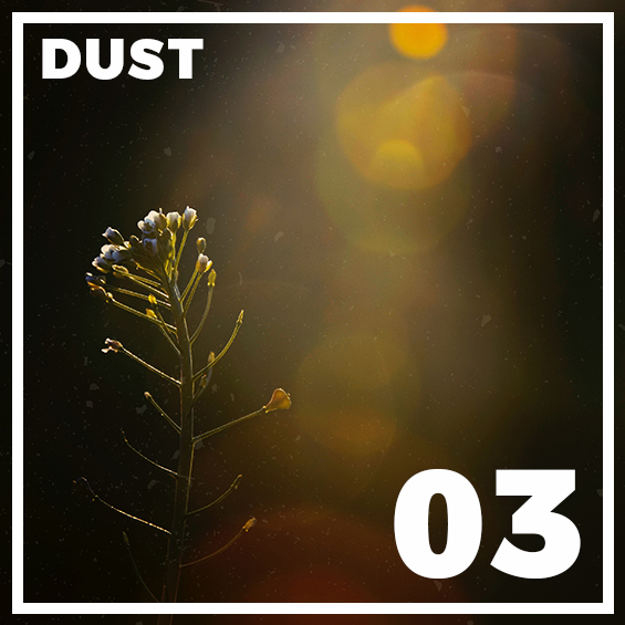 03-dust-photoshop-overlays