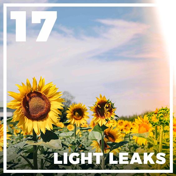 17-light-leak-presets-lightroom